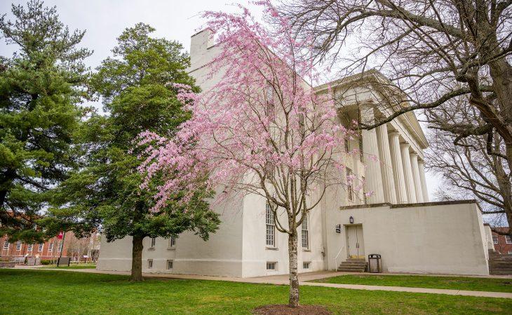 Transylvania University's Old Morrison in Spring