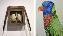 Two artworks, What's Inside and Parrot