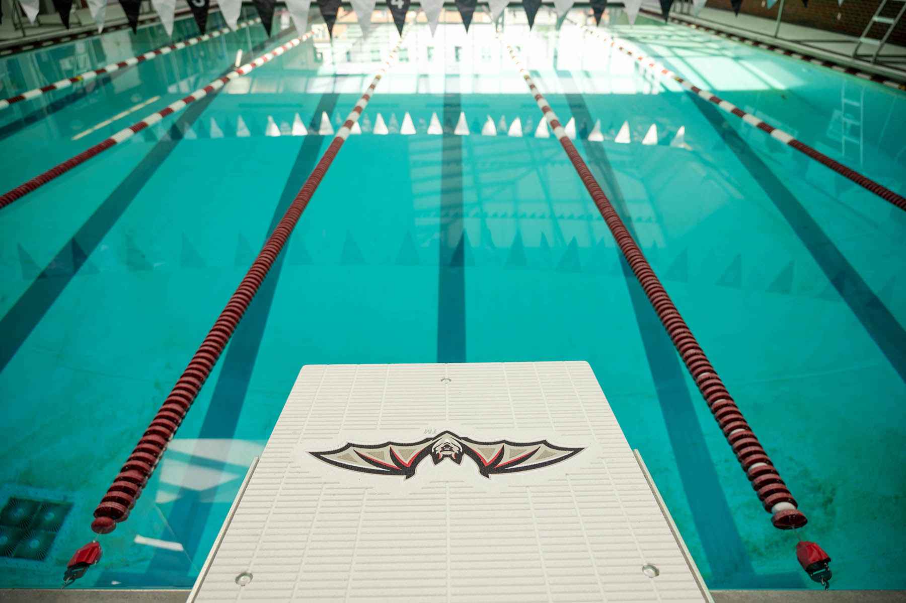 Transylvania to host summer programs for intermediate, advanced swimmers