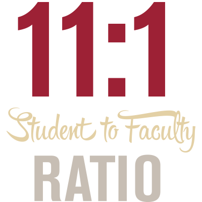eleven to one Student to Faculty ratio