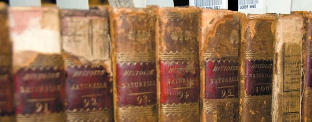 Old books from the special collection