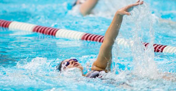 Transylvania Swimmer